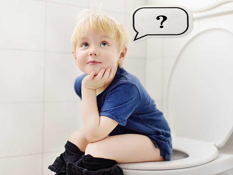 Potty Chair vs Potty Seat: should I use a potty or toilet