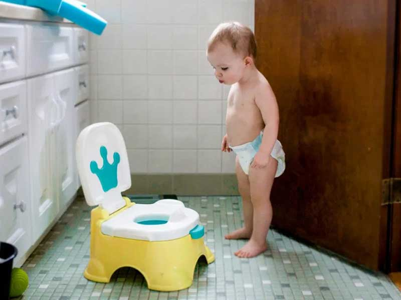 Potty Chair vs Potty Seat: when should you buy a potty chair